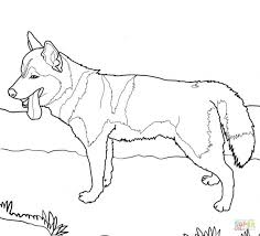 Siberian Husky Colouring Pages Dog Coloring Page Free Printable Book Puppy