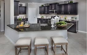 Terrazzo II New Home Plan In The Villages At Harmony Brookstone