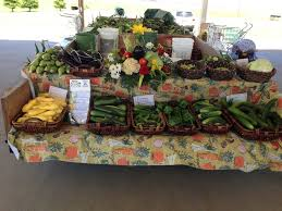 Maze Pumpkin Patch Evansville In by Cates Farm U0026 Produce Localharvest