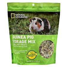 Can Guinea Pigs Eat Salted Pumpkin Seeds by National Geographic Forage Mix Guinea Pig Treat Small Pet