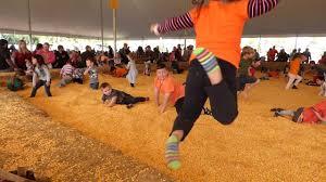 Bengtson Pumpkin Farm Chicago by Bengstons 2016 Corn Pit Youtube