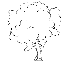 Tree Coloring Pages For Kids People