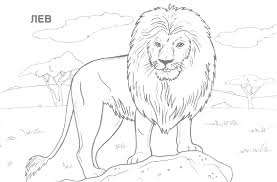 A Ordable Coloring Pages Of Wild Animals Printable 10 42380