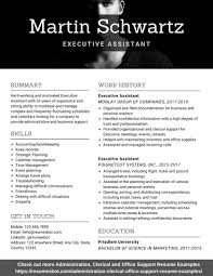 Executive Assistant Resume Samples And Tips [PDF+DOC ... Virtual Assistant Resume Sample Most Useful Best 25 Free Administrative Assistant Template Executive To Ceo Awesome Leading Professional Store Cover Unforgettable Examples Busradio Samples New And Templates Visualcv 10 Administrative Resume 2015 1