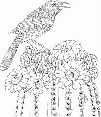 Remarkable Hard Coloring Pages Flowers Adults With For Printable And Mandala