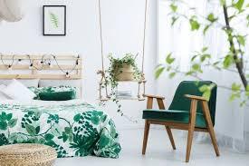 endlich wieder durchschlafen 7 luftreinigende pflanzen fürs