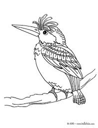 Penguin Fishing Woodpecker Coloring Page