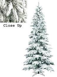 Flocked Trees Slim Snow Layered Fir Artificial Tree Unlit Sale Vickerman Christmas Reviews