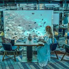100 Anantara Kihavah Maldives Sea Underwater Restaurant At In POPSUGAR