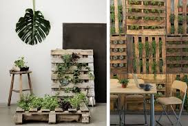 Best DIY Indoor Garden Decoration Ideas