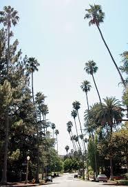 Pasadena Pumpkin Patch Groupon by 18 Best Eagle Rock Ca Images On Pinterest Eagles Los Angeles