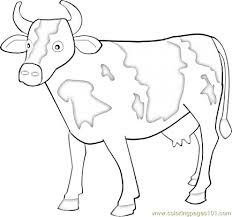Cow 5 Coloring Page