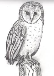 Barn Owl Sketch By ToPendi On DeviantArt Pencil Drawing Of Old Barn And Silo Stock Photography Image Sketches Barns Images The Best Red Store Opens Again For Season Oak Hill Farmer Gallery Of Manson Skb Architects 26 Owl Sketch By Mostlyharmful On Deviantart Sketch Cliparts Zone Pen Drawings Old Barns Acrylic Yahoo Search Results 15 Original Hand Drawn Farm Collection Vector Westside Rd Urban Sketchers North Bay Top 10 For Design Sketches Ralph Parker Artist
