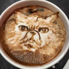 Angry Cat Latte Art