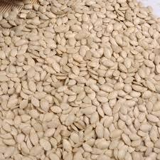 Organic Pumpkin Seeds Bulk by Market Price Pumpkin Seeds Market Price Pumpkin Seeds Suppliers