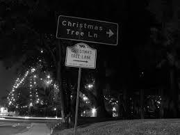 Christmas Tree Lane South Pasadena by Water And Power Associates