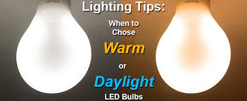 choosing daylight or warm color bulbs