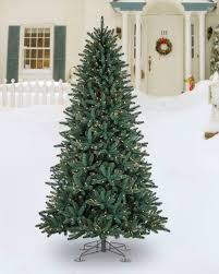 Pre Lit Porch Christmas Trees by Oakville Narrow Outdoor Christmas Tree Balsam Hill
