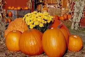 Pumpkin Moon Oak Park Illinois by Fall Pictures Photos Of Autumn Across America Reader U0027s Digest