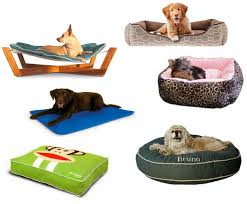 Cat Beds Petco by Pillow Woof Woof Mama