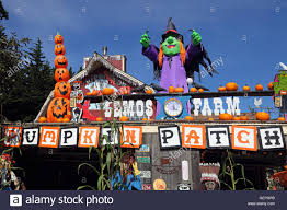 Half Moon Bay Pumpkin Patch Ca by Geography Travel Usa California Half Moon Bay Pumpkin Patch