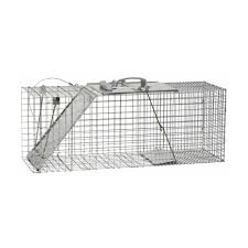 live cat trap live cat traps for humane trapping havahart