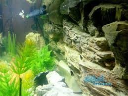juwel aquarium vision 260 aquarium background for juwel aquarium vision 260 3d rock background