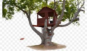 104 Tree House Floor Plan Building Png 775x480px Art Branch Building Download Free