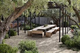 Specimen Trees: Are They Worth It? - Gardenista Garden Design With Backyard Trees Privacy Yard A Veggie Bed Chicken Coop And Fire Pit You Bet How To Illuminate Your With Landscape Lighting Hgtv Plant Fruit Tree In The Backyard Woodchip Youtube Privacy 10 Best Plants Grow Bob Vila 51 Front Landscaping Ideas Designs A Wonderful Dilemma Ramblings From Desert Plant Shade Digital Jokers Growing Bana Trees In Wearefound Home 25 Potted Ideas On Pinterest Indoor Lemon Tree
