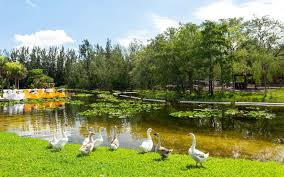 Amelia Earhart Park In Hialeah/Hialeah Gardens, FL Verified 20 Off Byta Coupon Codes Promo Holiday Fire Mountain Gems Code Fniture Home Free Shipping Special Sales Mountain Gem And Beads Online Store Deals Gems Employment Bath Body Works Coupon Codes Some Of The Best Rources For Purchasing Beads Smokey Bones Gift Card Bob Evans Military Discount Competitors Revenue Firountaingemscom Code Coupon Faq Which Bead Subscription Is Best Monthly Box Right Me Slideshow San Francisco Aaa Senior Hotel Discounts Specials