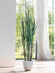 kunstpflanze bambusstock höhe 122 cm