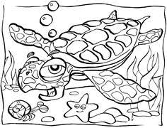 Extremely Ideas Ocean Scene Coloring Pages 20 Underwater Animal 01