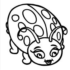 Beautiful Lady Bug Coloring Page