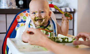 1530 best baby images on babies foods when to introduce each food