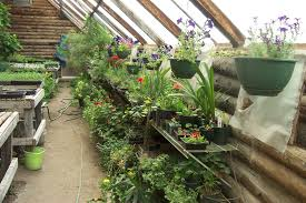 Awesome Picture Of Unique Greenhouse Designs - Fabulous Homes ... Small Greenhouse Plans Howtospecialist How To Build Step By Green House Plan Ana White Our Diy Projects Amazing Decoration Residential Magnificent Breathtaking Floor Ideas Best Idea Home Design Homemade Low Cost Pallet Wood Greenhouse Viable Safe Year Greenhouses Forum At Permies Terrarium Designed By Atelier 2 For Design Stockholm Room Creative Rooms Home Interior Simple Cool Garden Youtube Winterized Raised Bed Free To View Cottage New Under