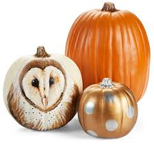 Owl Pumpkin Template Printable by Decorate For Fall And Make This Elegant Diy Painted Owl Pumpkin