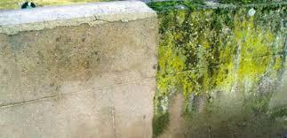comment nettoyer des murs façades et terrasses ré à la hune