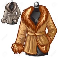 womens brown winter coat with fur collar vector illustration