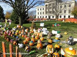 Sycamore Pumpkin Fest Charlotte Nc by 8 Best Downtown Sycamore Images On Pinterest Childhood Drawings