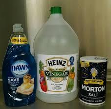 Salt Vinegar And Glyphosate Control Freaks