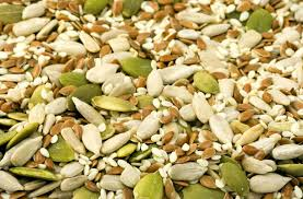 Roasted Shelled Pumpkin Seeds Recipe by How To Cook A Whole Pumpkin Seeds Guts And All Inhabitat