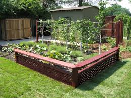 How To Grow Your Own Kitchen Garden Small Patio Vegetable Garden Ideas Unique Backyard For With Cream Outdoor Kitchens Home Kitchen Design Best 25 Vegetable Gardens Ideas On Pinterest And Layout Accompanied By Amazing Views Of Veggie 2014 Potager Rock That Will Put Designs Raised Cadagucom Small Backyard Garden Archives Seg2011com Unique Improvement Pictures On