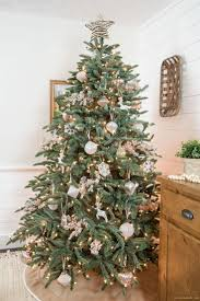Balsam Christmas Tree Care by Best 25 Balsam Christmas Tree Ideas On Pinterest Balsam Tree
