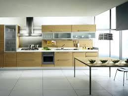Kitchen Cabinet Contemporary Style Kitchen Cabinets Contemporary