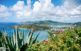 Curtain Bluff Antigua Irma by Ricky Wilson Why Antigua Gets My Vote Telegraph