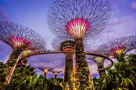 Singapore Package SIM Card Gardens By the Bay