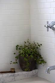 Gerbera Corner Pedestal Sink by 16 Best Home Work Report Shower Plants Images On Pinterest