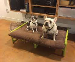 PVC Pipe Raised Dog Bed 7 Steps with