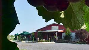 Red Barn Winery & Vineyards In Lafayette, TN - Tennessee Vacation Chaffins Barn Dinner Theatre Nowplayingnashvillecom Upper Cumberland Wine Trail Home Lafayette And Orinda Kazzit Us Wineries Intertional Winery 2010 Results Wines Of The South Regional Competion Planning To Hike Just A Few Miles Up Road This Weekend Have City Nashville Live Shows Ding Wemaking Butler April Tour Recap Honk Rattle Roll Touring Region Luton Photography Tours
