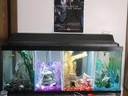 Star Wars Themed Aquarium Safe Decorations by 35 Best Betta Tank Images On Pinterest Betta Tank Aquarium